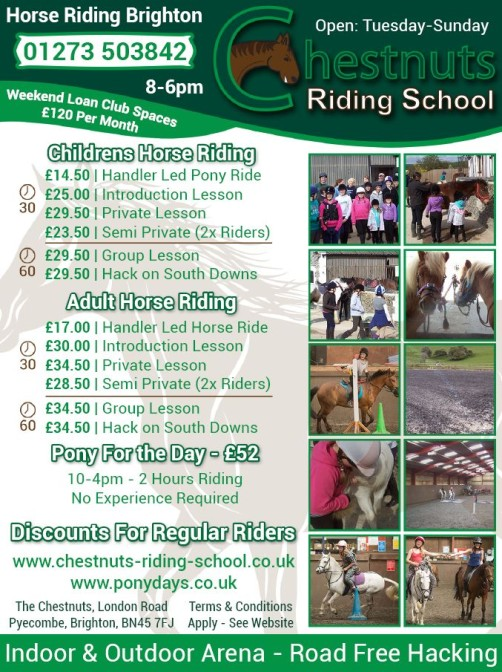 Friday Ad 1/4 Page Advert for Chestnuts Riding School